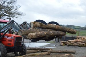 Log Grab